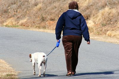 """Pick up after your dog"" is the law in many municipalities."