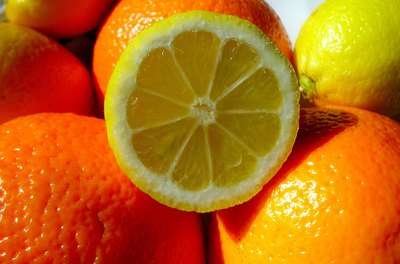 Cats dislike the smell of citrus fruit.