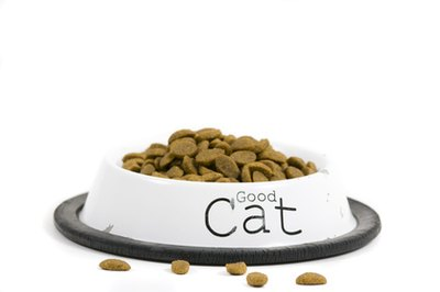 Dry cat food is often cheaper but less nutritious than canned food.
