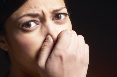 Some people open their noses to odor as odor testers.