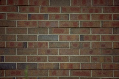 Solid brick fences offer privacy and durability.