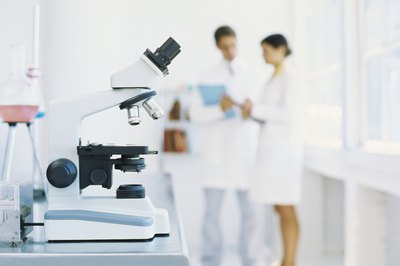 Cytotechnologists work in laboratories and study human cells.
