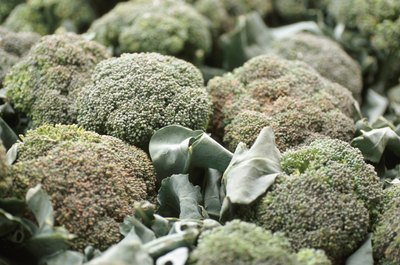Broccoli is a member of the cabbage family.