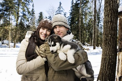 Choose a breed that's right for you! This outdoor-loving couple is perfectly matched to this husky puppy.