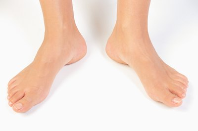 Your ankles consist of muscles that are connected to the leg and foot.