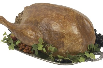 Your cat probably thinks the turkey smells good too.