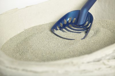Clumping litter is easy to keep clean.