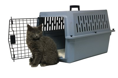 Cat playpens provide your kitty with much more room than a carrier does.