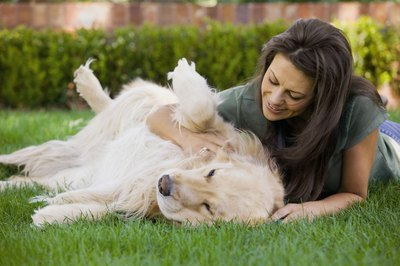 Scratching your dog's belly might result in some leg-kicking behavior.