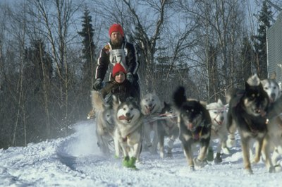 The Iditarod retraces the famous Anchorage to Nome run.