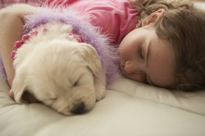 Young puppies need more sleep than healthy adult dogs.