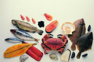 Eating seafood regularly can improve your cognitive function.