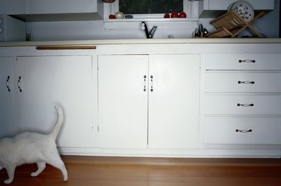 Preventing your cat from opening cabinets can keep her safe.