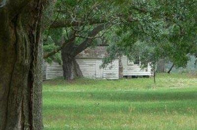 Slave Cabins on a South Carolina Indigo Plantation courtesy of Google Images