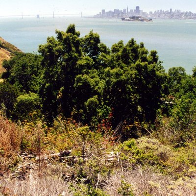 Angel Island State Park & city of SF