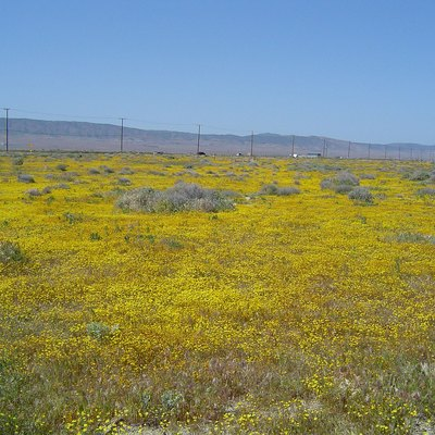 Rv Parks In Antelope Valley California Usa Today