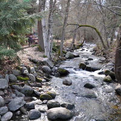 Ashland Creek Flowing Through Lithia Park In Ashland In The U.S. State Of Oregon