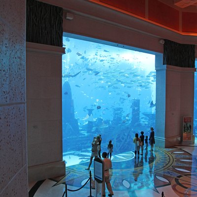 Atlantis, The Palm (Hotel Aquarium)