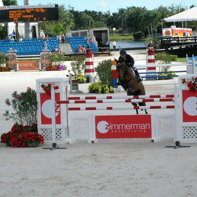Beezie Madden And Onlight, Grand Prix Competition At The Fti Winter Equestrian Festival, Wellington, Florida.