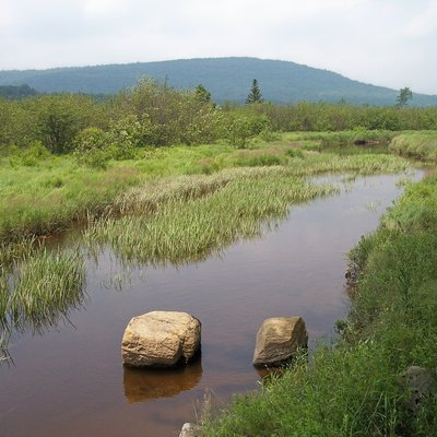 The Blackwater River in its upper course in w:Canaan Valley Resort State Park