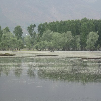 A view of the Wullar Lake located in Bandipora district of Kashmir. Some boats are seen floating in the lake.