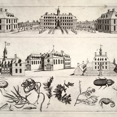 Print of the Bodleian Plate, depicting the colonial architecture of Williamsburg, Virginia. The plate, discovered in the Bodleian Library at Oxford, was critical to the reconstruction of Williamsburg in the early-mid 20th century.