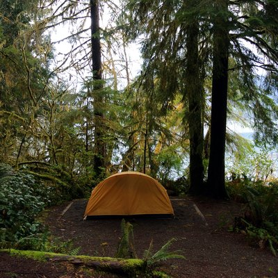 Camping site on the shores of Lake Quinault, Olympic National Park.