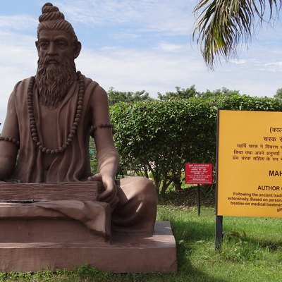 Charak Monument in Yog Peeth Campus,Father of Medicine & Surgery