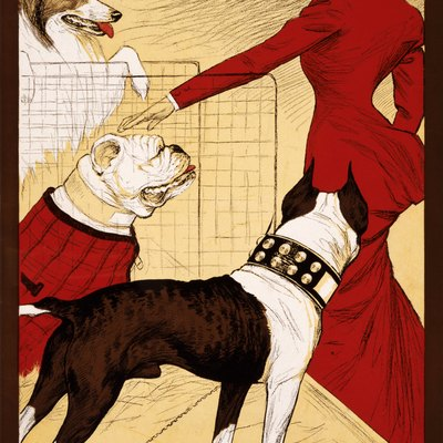 Poster showing a woman admiring dogs at the Chicago Kennel Club's dog show. Text: