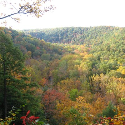 The Clear Fork of the Mohican River and the Clear Fork Gorge, as seen from Mohican State Park Gorge Overlook on October 13, 2008.