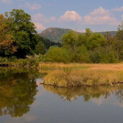 Looking across an inlet of Cove Lake at Cove Lake State Park in Campbell County, Tennessee, in the southeastern United States. Devils Racetrack, the rocky western end of Cumberland Mountain, is visible above the treeline.