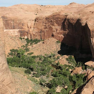 View into the main canyon of Coyote Gulch, looking northwest from a point on the rim above Coyote Natural Bridge.