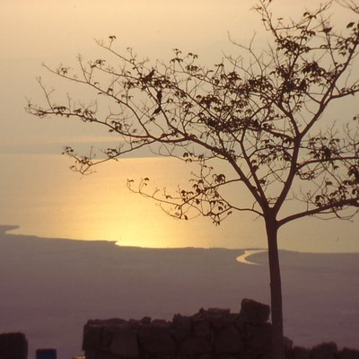 Dead Sea in the morning, seen from Masada