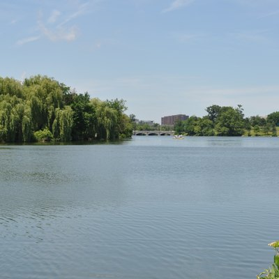 Lake within Delaware PaRK, bUFFALO, New York