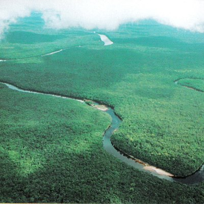 View of the Orinoco River in Mariusa National Park (Delta Amacuro)