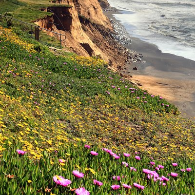 Erosion and spring in Pacifica