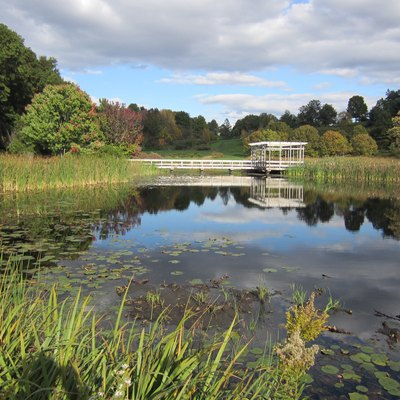 A picturesque pavilion in the F.R. Newman Arboretum, Cornell University