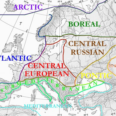 Floristic regions of Europe and neighbouring areas, according to Wolfgang Frey and Rainer Lösch