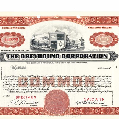 1936 Greyhound stock certificate #0000