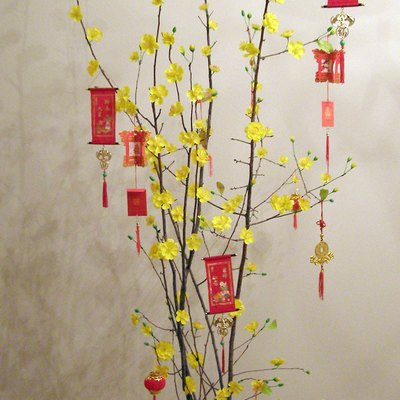 A traditional Tết (Lunar New Year) tree.