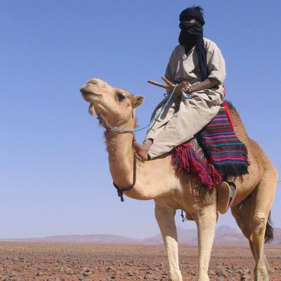 The Tuareg once controlled the central Sahara and its trade.