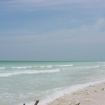 This photograph was taken at Honeymoon Island State Park, which is located in northwestern Pinellas County near Clearwater, FL.