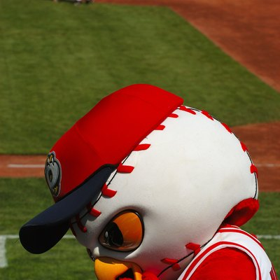 Hootz, the mascot of the Orem Owlz franchise in the Pioneer League. Photo taken during game with Helena Brewers on July 16, 2006.