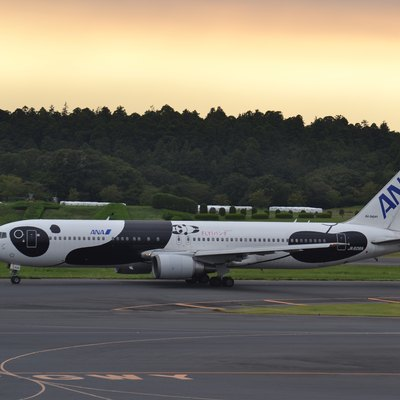 Boeing 767/3 of ANA-All Nippon Airlines in special