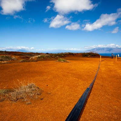 Irrigation tubing running along the red dirt of Kahoolawe as a crew works to plant new life in the hard packed soil.