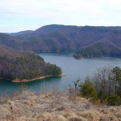 Picture of Lake Jocassee from a look-out tower in the direction of Whitewater River.