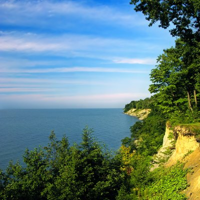 Lake Erie bluffs, David M. Roderick Wildlife Reserve, Erie County.