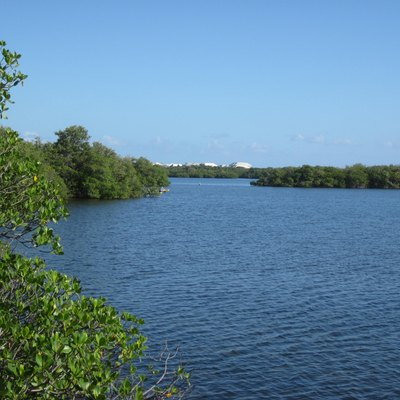 Lake Worth Lagoon at John D. MacArthur Beach State Park, Riviera Beach, FL