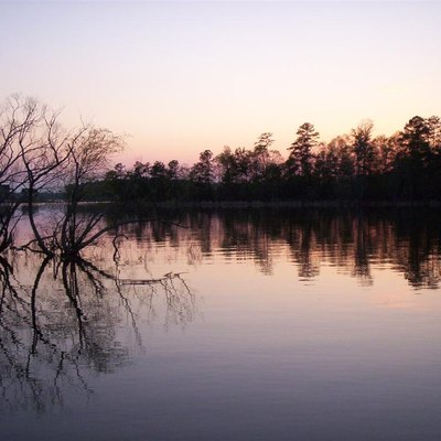Photo of Lake Murray's western side.
