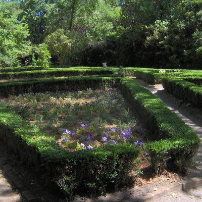 The Flowerdale Garden at Magnolia Plantation and Gardens in Charleston, South Carolina, in the southeastern United States. First planted in 1680, the garden is one of the oldest unrestored gardens in the United States.